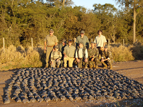 Santa Rosa Mercedes >> Fly Fishing & Hunting Adventures - Wing Shooting, Argentina